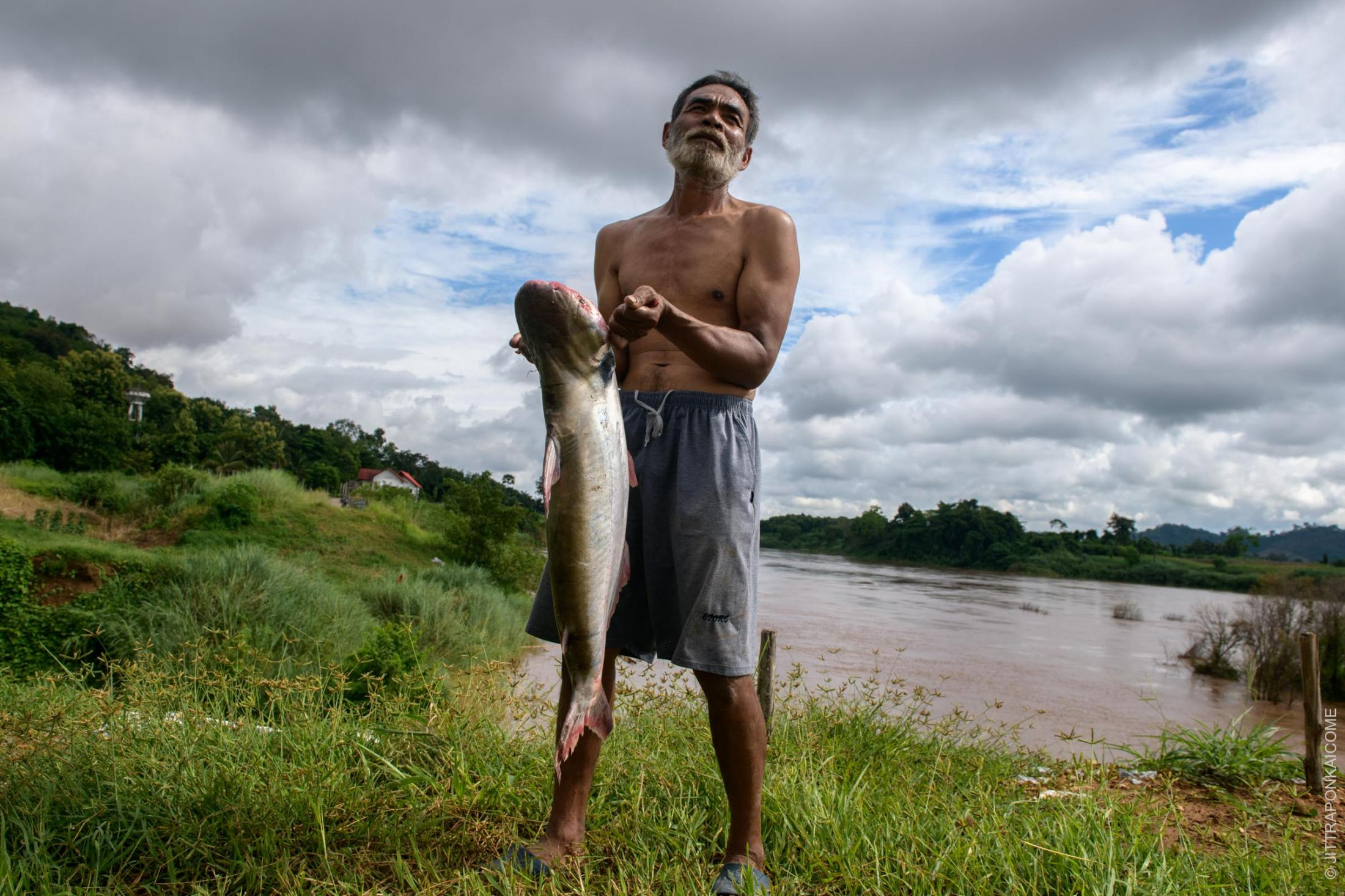 53 years old fisherman, Adul Dulipee, caught 12 kilograms of black-eared catfish. Nowadays, the population of this fish is reducing due to the unusually low water levels and tidal activity downstream, preventing this specie from laying eggs. Before the dam was built on the Mekong River, fishermen could catch this amount of fish at least once a week. Sales which allowed them to gain sufficient income. As a direct result of the ecological changes to the riverine ecosystem caused directly by the dams, there are fewer fish to catch. Hence, they need to find alternative jobs to supplement their incomes, outside of their expertise, and locale. In Nong Khai, Thailand – August 2020.