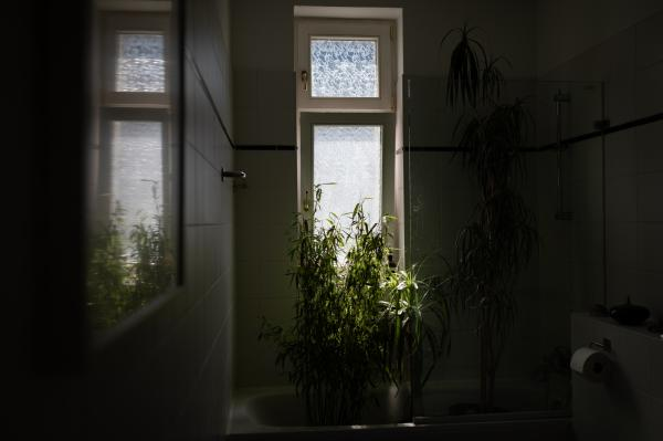 Nadja Wohlleben (@nadjawohlleben) is an independent photojournalist and documentary photographer based in Berlin. . Rainforest feeling in my bathroom. Berlin, Germany, April 28, 2020.