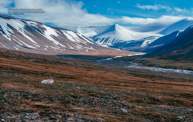 Photography image - Loading Svalbard3.jpg