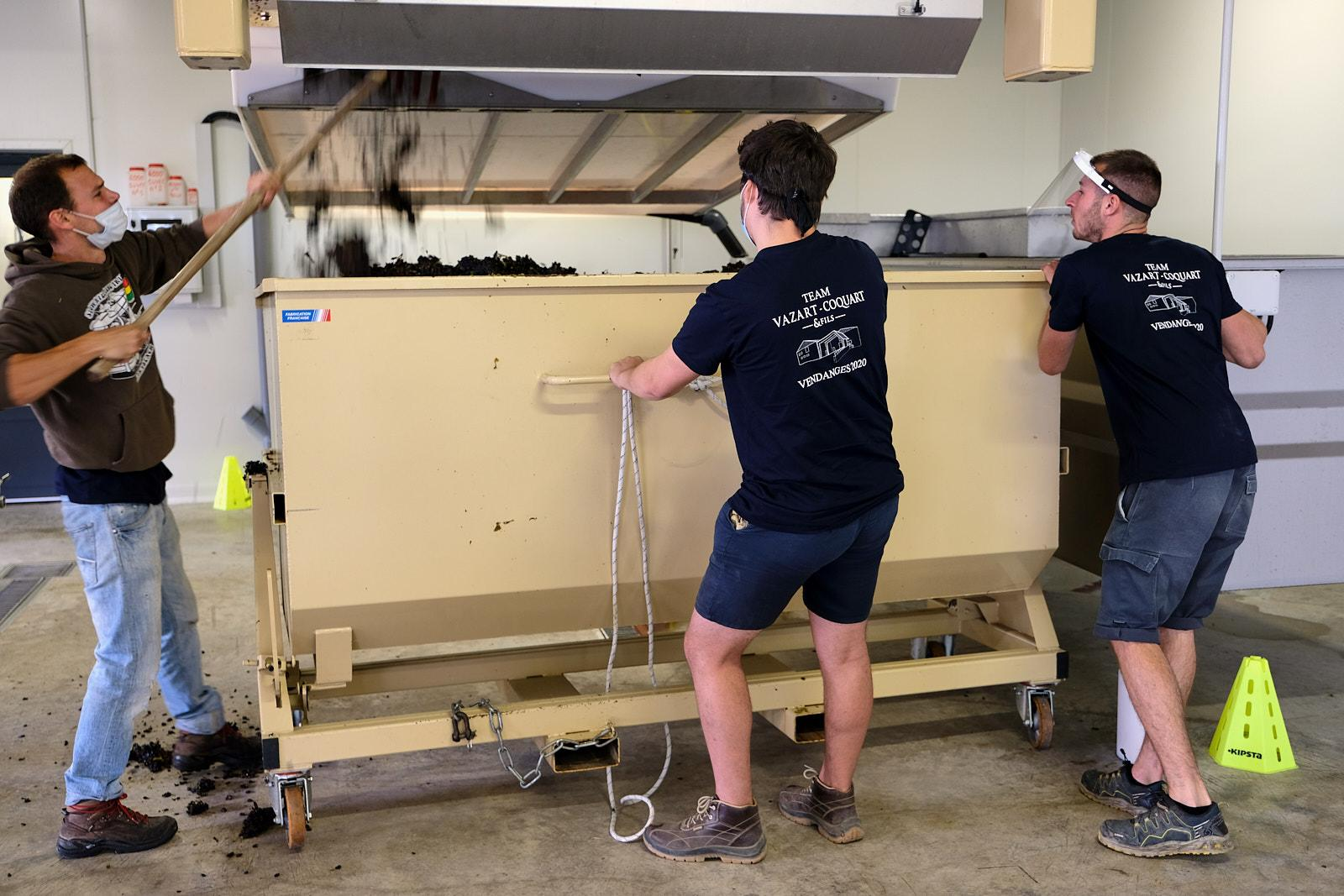 Workers of the Vazart-Coquart & fils Champagne brand take out the residu pulp from pressed grapes into bins. The residu will be used to make hand sanitising gel for the pharmaceutical industry.