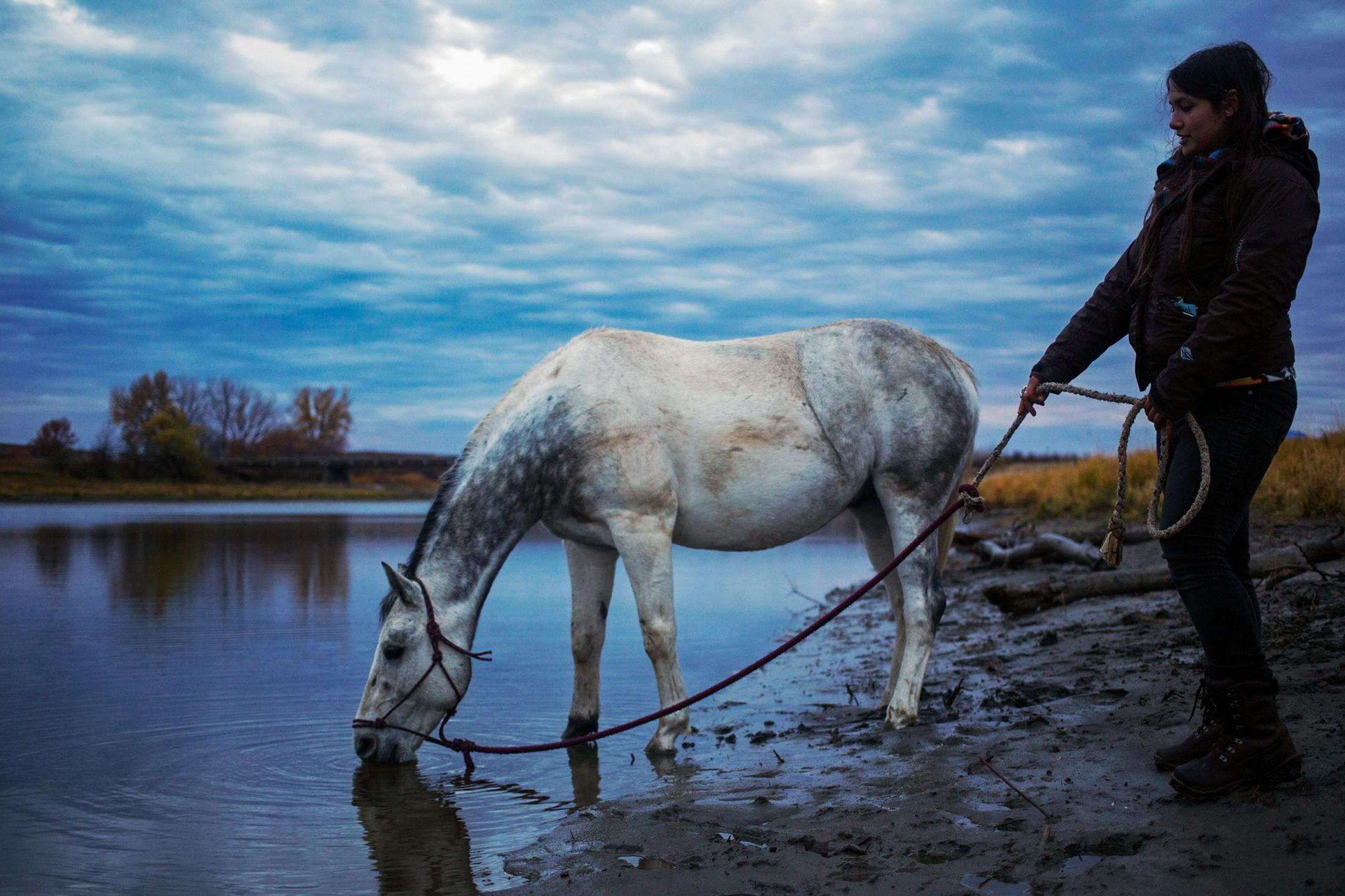 Jerica Meditz brings her new horse, Shota, to a stream so he can drink water at the Sacred Stone Camp in North Dakota. Jerica received the horse from the Standing Rock Horse Society once Shota was injured after being kicked by another horse.