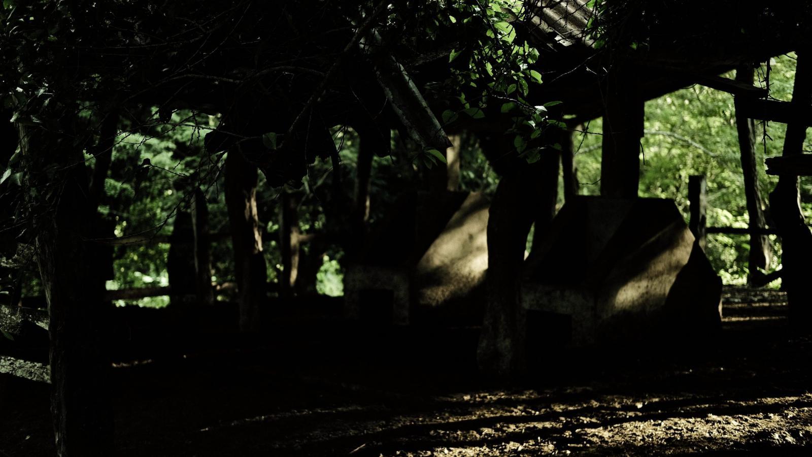 Photography image - Loading DSCF0433.JPG