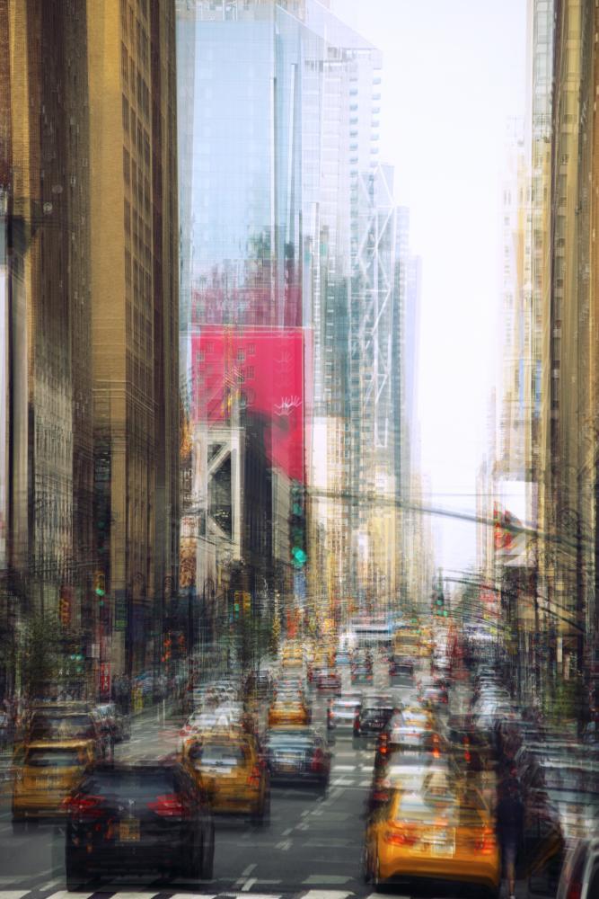 Photography image - Loading ILA_8005.jpg