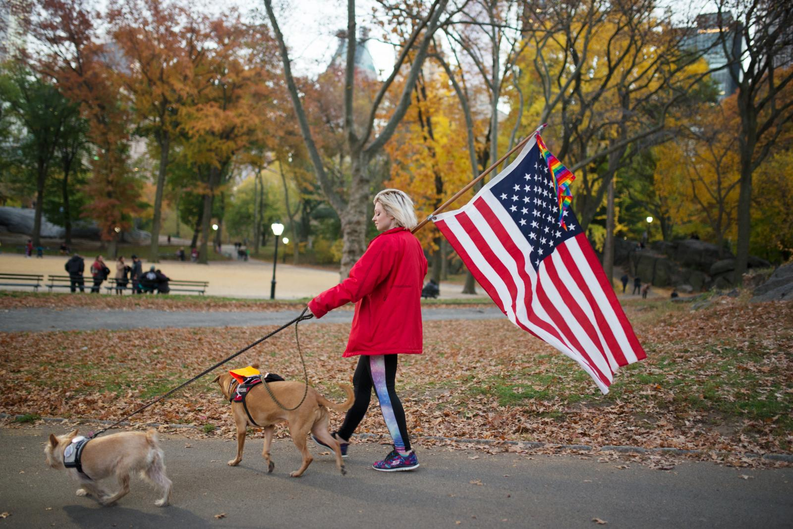 A demonstrator walks her dogs during the 5th day of protests against President Donald Trump. New York City, United States - November 13, 2016.