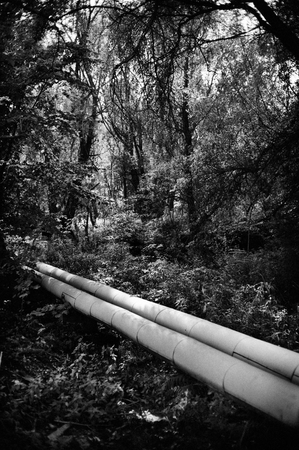 "Poland, Silesia Region, Zabrze. September 2009. Sosnica- Makoszowy Coal Mine. Heat pipes in the woods near the Sosnica- Makoszowy Coal Mine. Sosnica- Makoszowy Coal Mine arose from merger of two mines, coal mine ""Sosnica"" in Gliwice and coal mine Makoszowy in Zabrze. Levels of mining can be found at a depth between 530 and 930 m. The ability of mining amounts about 12 000 tons per day, the mining area amounts 28,4 km2.. Nowadays 60% of polish energy comes from burning black coal, the biggest enemy of our climate. Poland is not one of the biggest countriest and doesnt have big population but contributes to climate change and is in first 20 countries that produce biggest amount of CO2. in 2004-2005 polish emmisions increases for more than 2 mln tones Whith China , Australia and Republic of South Africa , Poland belonges to countries that are most dependent on coal. Only 3% of polish energy comes from climate-friendly sources. Poland is Eupean leader in power industry energy-consuming . (Polish power industry consumes biggest amount of energy to produce energy)."