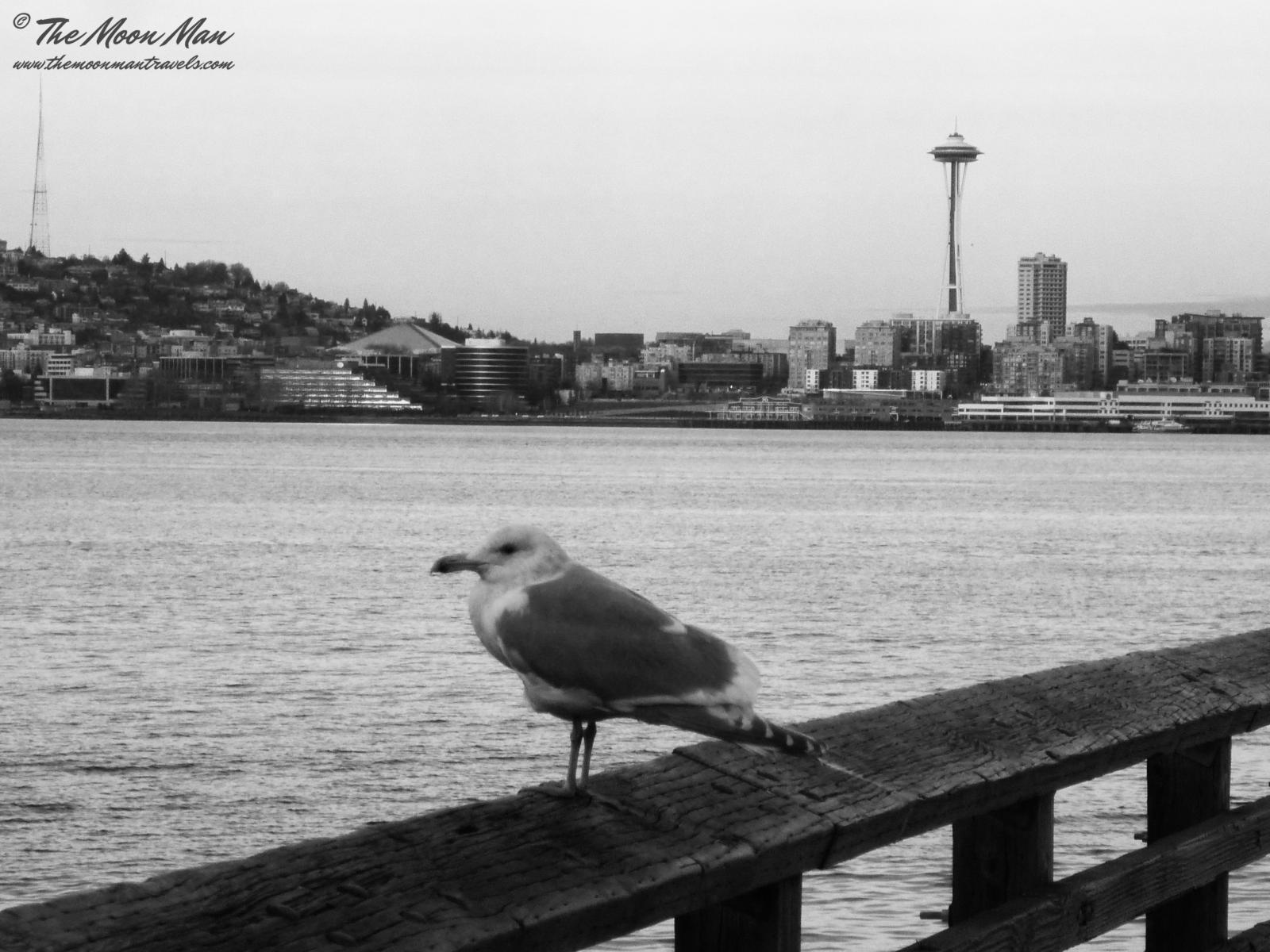 Photography image - Loading Seattle_(25).jpg