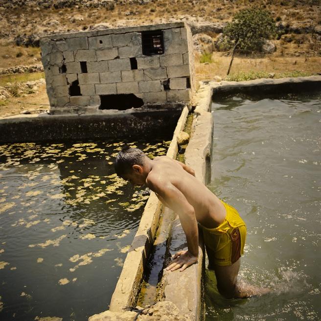 Art and Documentary Photography - Loading Kaufman_Leeor_sabras for visura (1 of 21).jpg