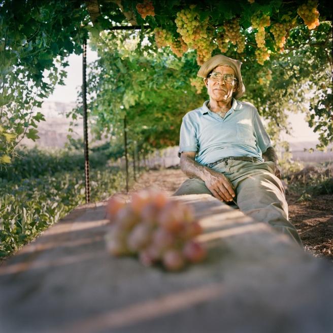 Art and Documentary Photography - Loading Kaufman_Leeor_sabras for visura (4 of 21).jpg