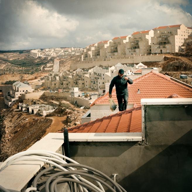 Art and Documentary Photography - Loading Kaufman_Leeor_sabras for visura (10 of 21).jpg