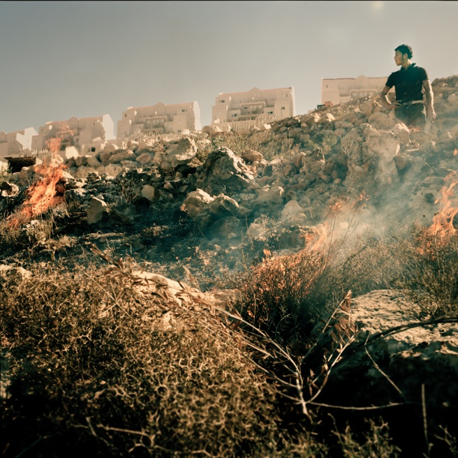 Art and Documentary Photography - Loading Kaufman_Leeor_sabras for visura (13 of 21).jpg