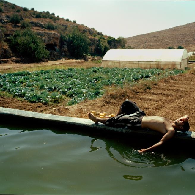 Art and Documentary Photography - Loading Kaufman_Leeor_sabras for visura (19 of 21).jpg