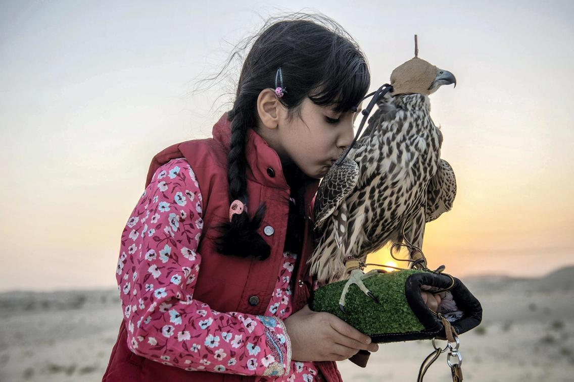 Photography image - Loading 1_Osha_The_Young_Falconer_1.jpg
