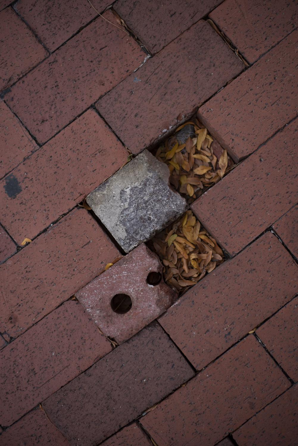 Missing brick halves are replaced by fallen leaves Oct. 5 in downtown Columbia, Mo.