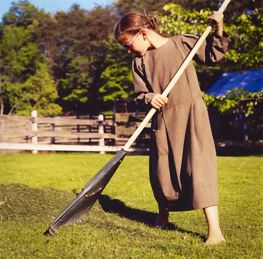 Dorothy raking the grass