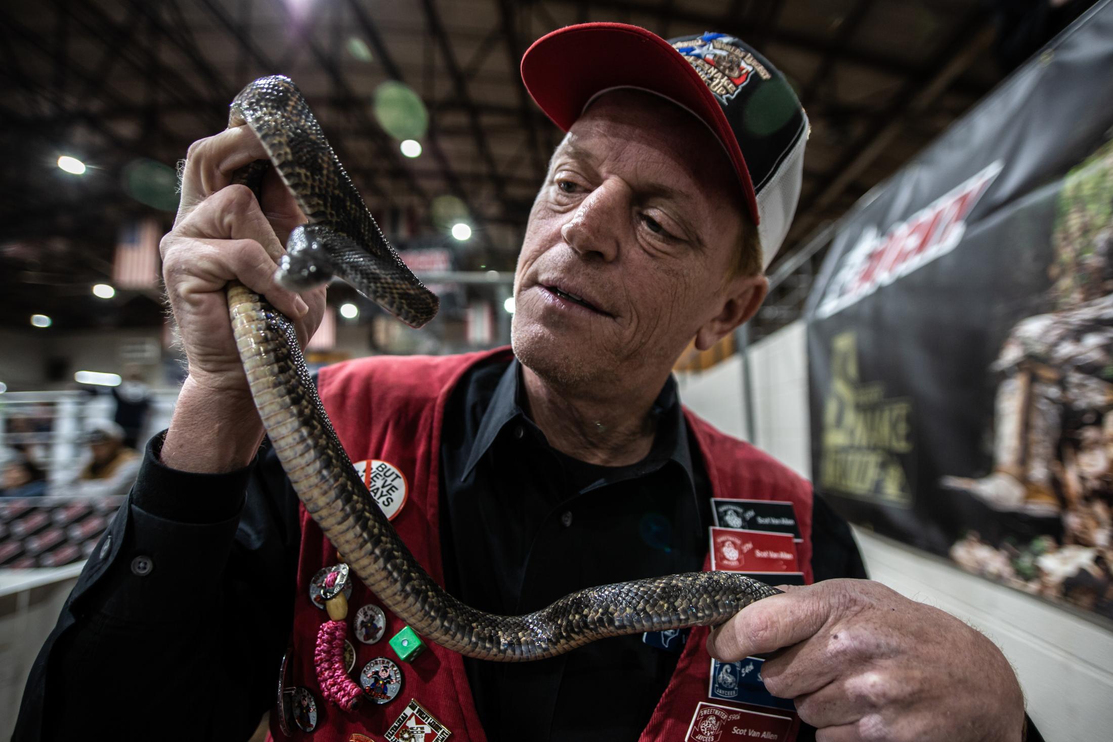 Scot Van Allen, a Jaycee Member, displays a snake showing visitors of the 2020 Rattlesnake Roundup.