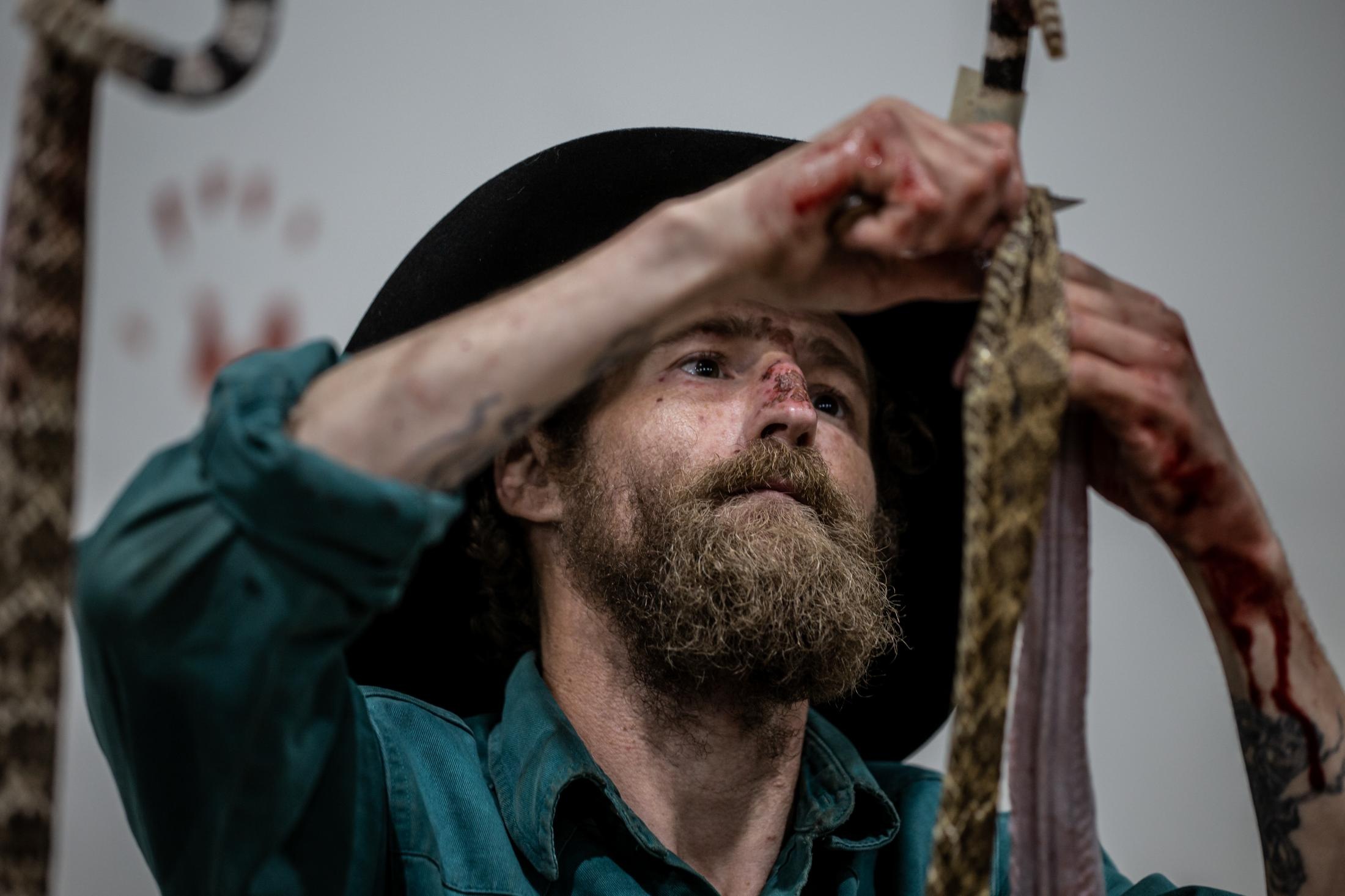 A man focuses on removing the skin of a beheaded rattlesnake at the Sweetwater Rattlesnake Roundup.