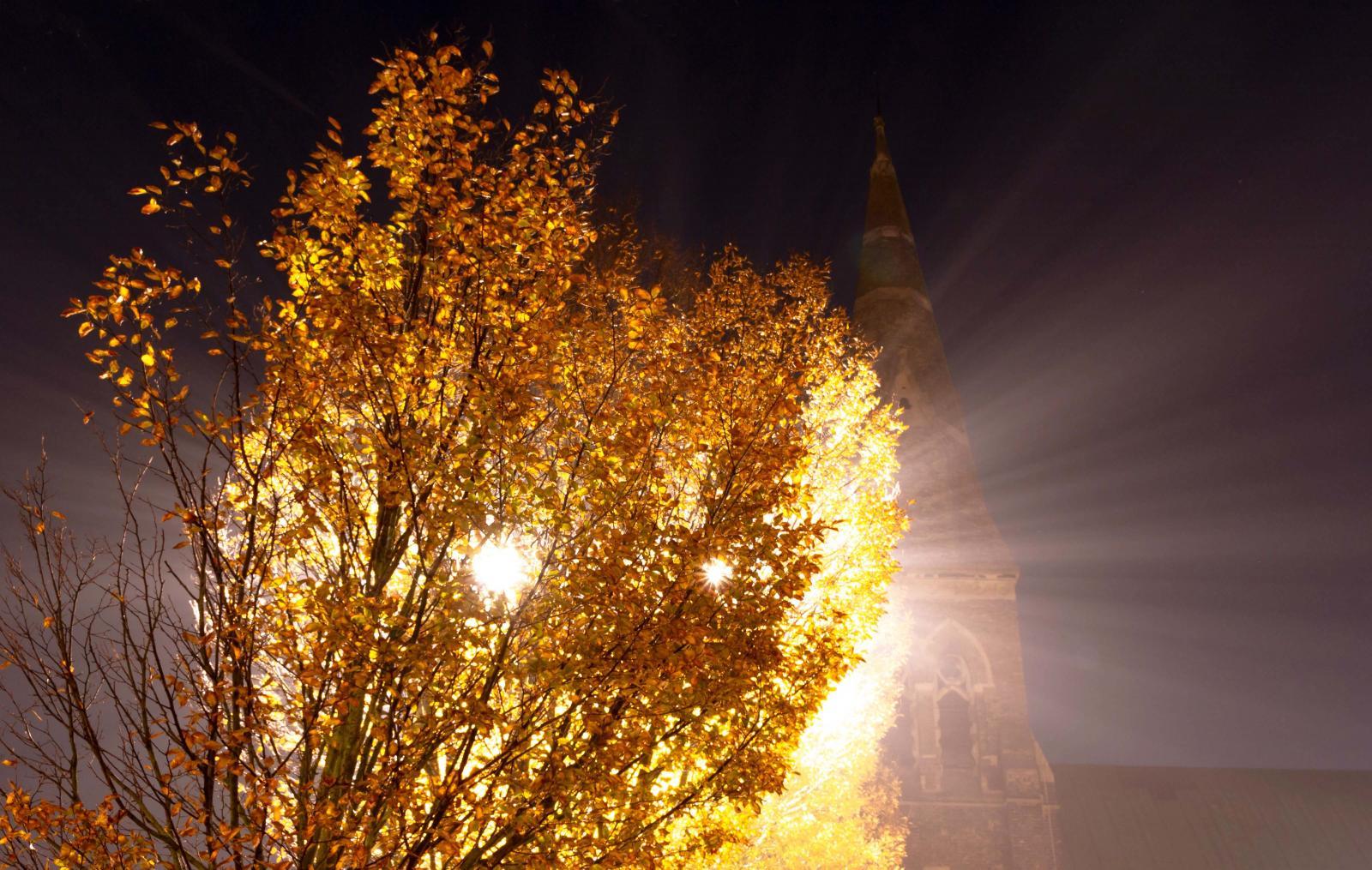 Photography image - Loading Reflection_of_Lightst_3.jpg