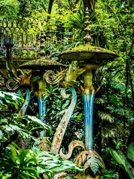 Xilitla: A Concrete Garden in the Mexican Jungle