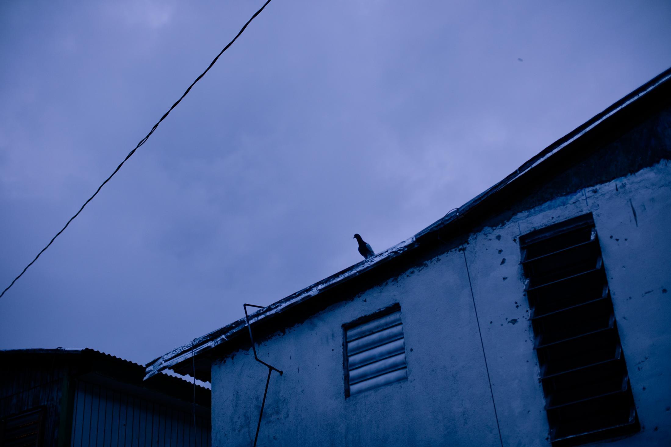 Image of Puerto Rico taken by José A. Alvarado Jr.