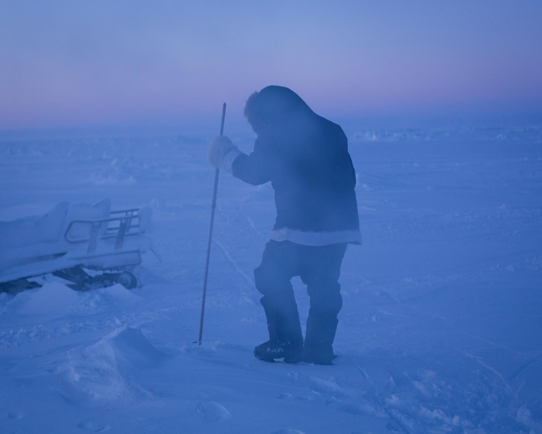 Darcy Enoogoo searches for seal breathing holes on the sea ice near Arctic Bay.