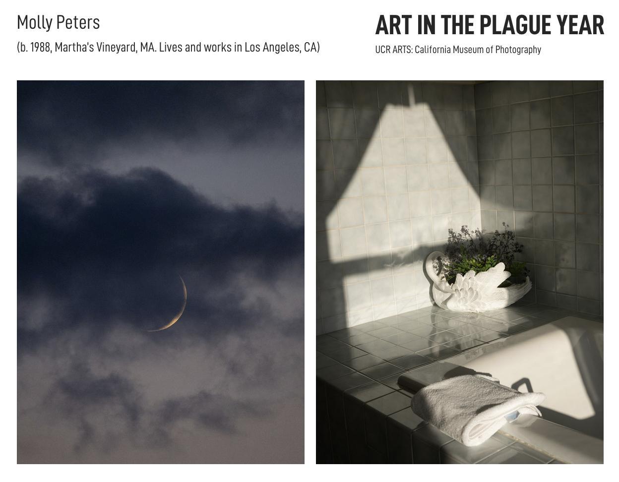 Art and Documentary Photography - Loading ArtPlagueYear.1.jpg