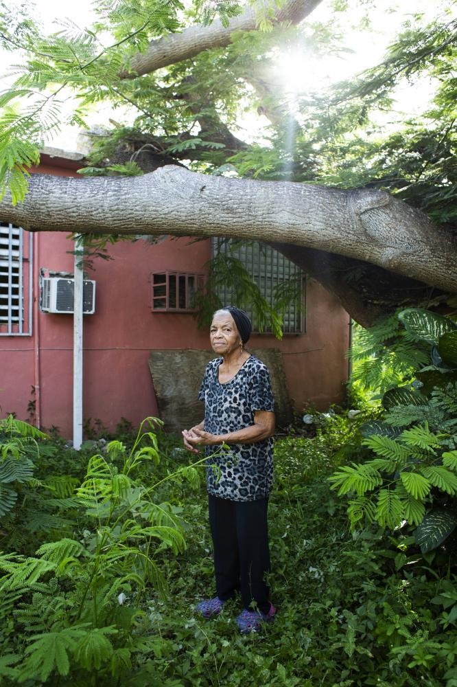 Paula Cruz Ortiz, 85, poses for a portrait at the side of her home next to a tree that remains over her house at Punta Santiago in Humacao, P.R., on September 5, 2018. A flamboyán tree fell on her home during hurricane Maria, but a year after the storm it still has not been removed. Cruz's home has severe leaking problems all the house and she has been sleeping in the living room on a swinging chair since the storm. Across the island, 1.1 million households requested help from the Federal Emergency Management Agency for their damages, but 58 percent of those were denied. In Punta Santiago, where a vast of the residents dealt with roof leaks, mold or cracked walls, a year later, received a median grant from FEMA for $1,812, compared to $9,127 given to survivors of Hurricane Sandy in Texas.