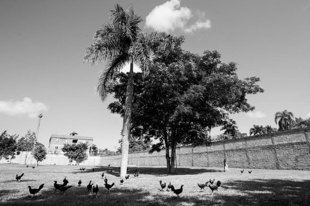 Art and Documentary Photography - Loading fotovisura_grant_meetingspot_0009.jpg