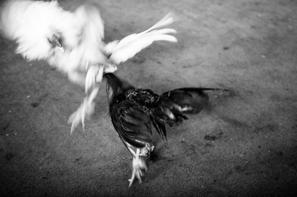 Art and Documentary Photography - Loading fotovisura_grant_meetingspot_0017.jpg