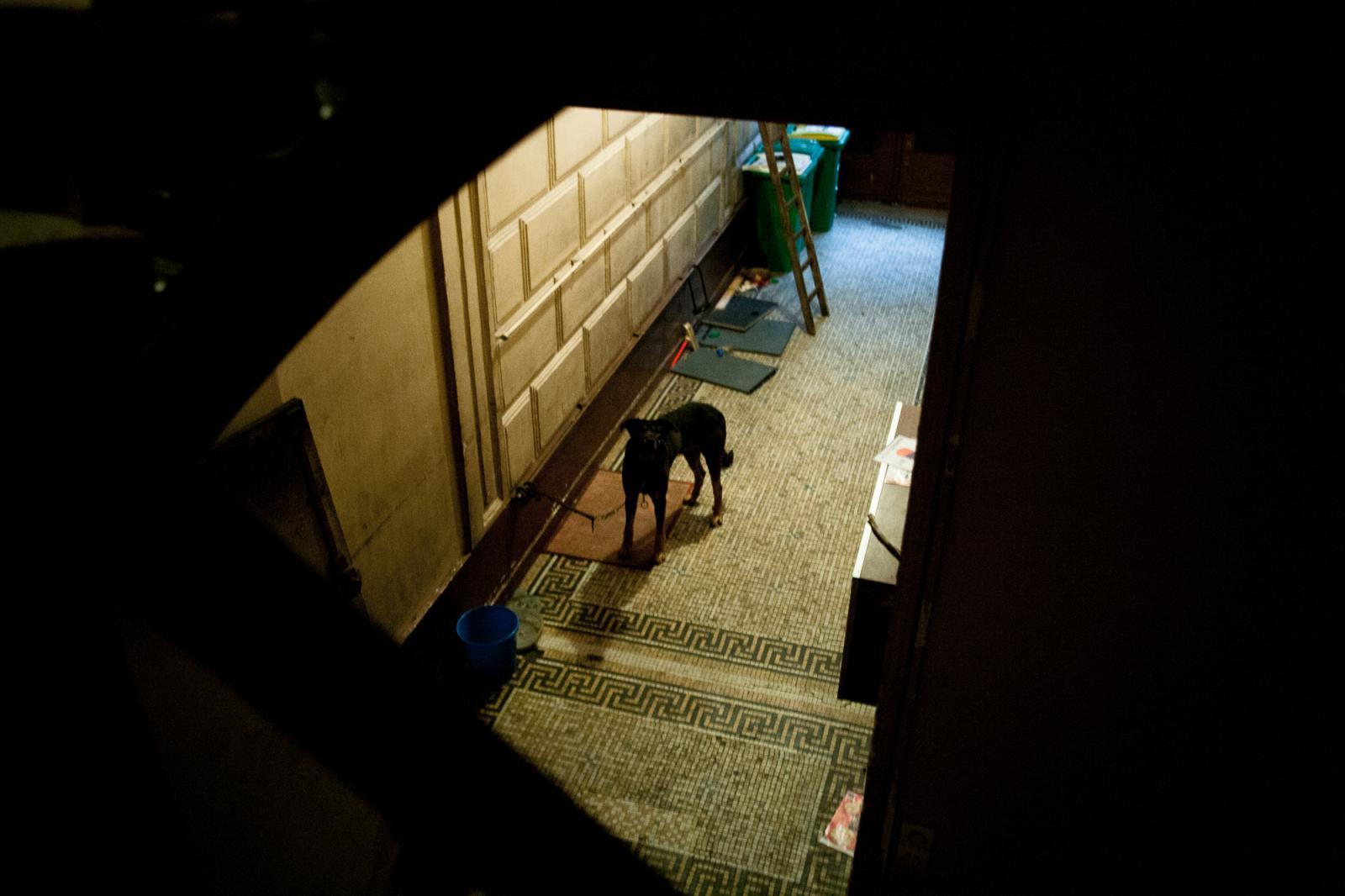 Photography image - Loading juj_roof_investigations_003.jpg
