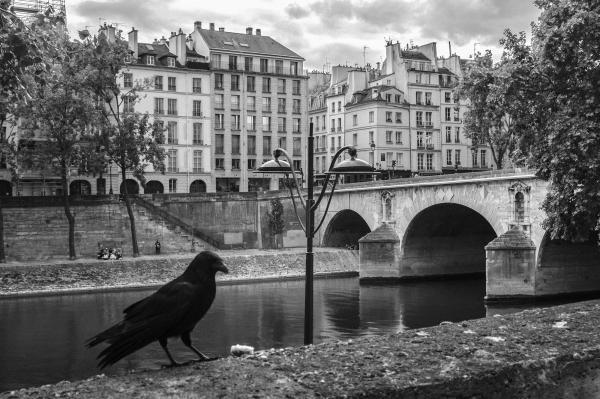 Recreating Memories of Ile Saint-Louis