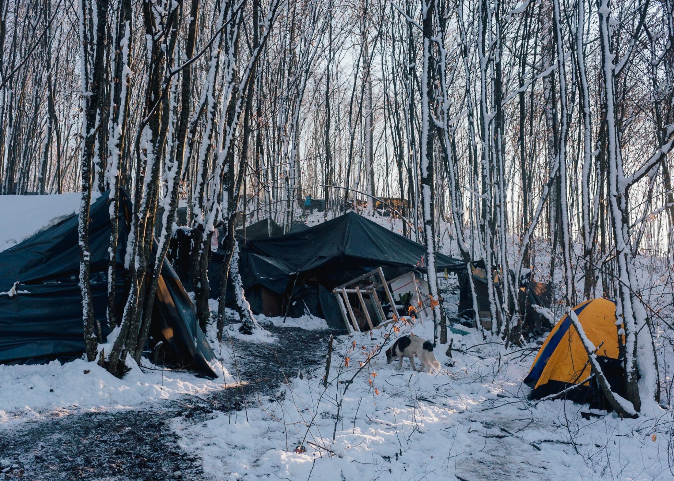 Self-built shelter from bangladeshi migrants close to the city of Velika Kladusa.