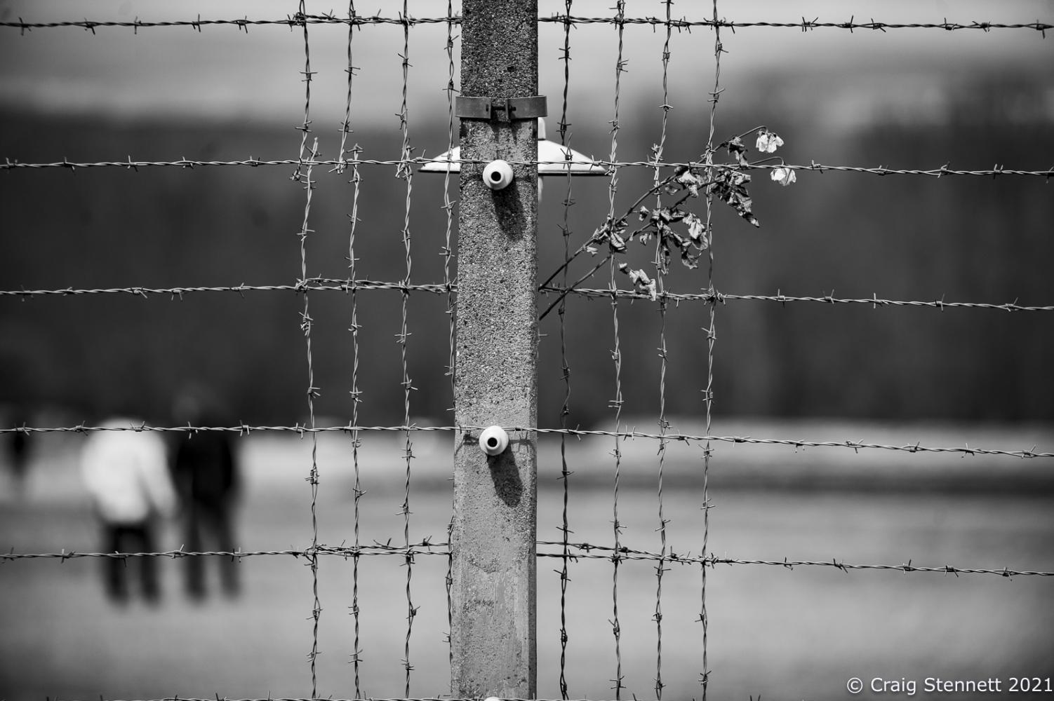 Photography image - Loading _NEF2165.jpg
