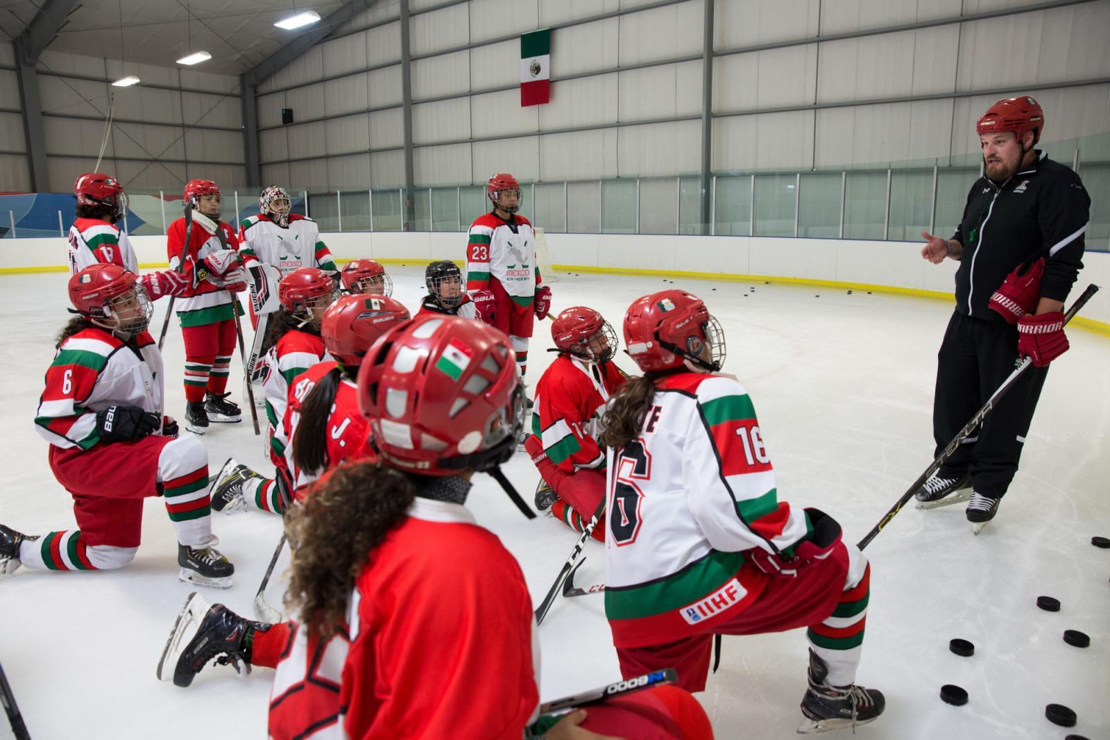 Photography image - Loading WomenIceHockey04.jpg