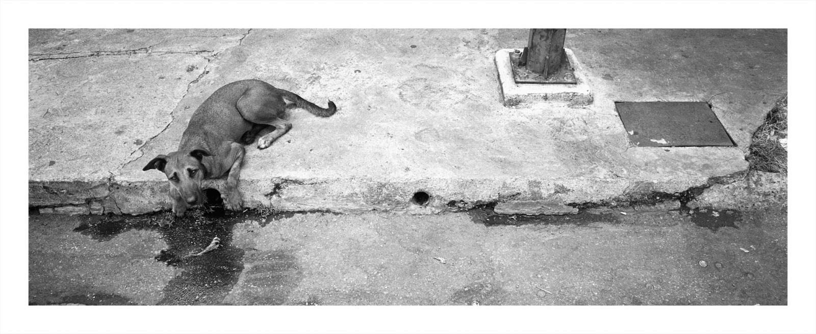 Photography image - Loading Julio_E._001.jpg