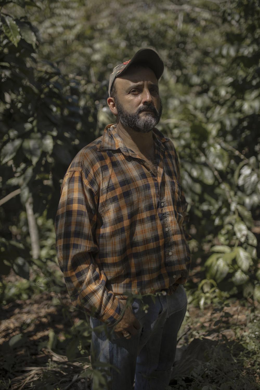 Sergio Jáuregui Castelán, 47, cafeticultor veracruzano posa en la finca familiar de café durante una jornada laboral el 19 de Agosto de 2020, en la comunidad de Zentla, municipio de Huatusco, Veracruz.