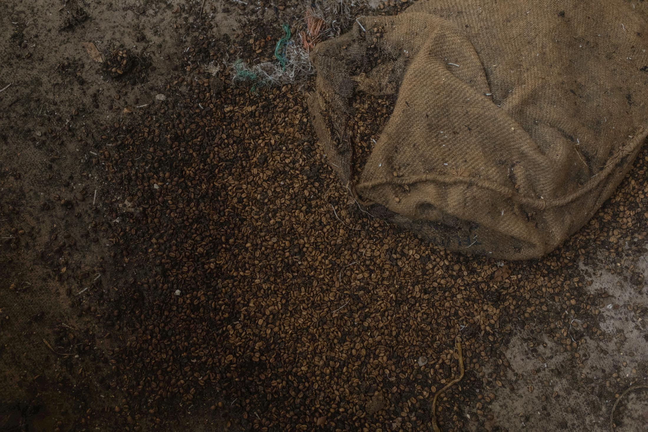 En 1989 la desaparición del Instituto Mexicano del Café (INMECAFE) dejó en el desamparo a miles de productores cafetaleros en el país, lo que obligó a muchos a vender su producción a menor precio o a empresas intermediarias que revenden a grandes transnacionales.