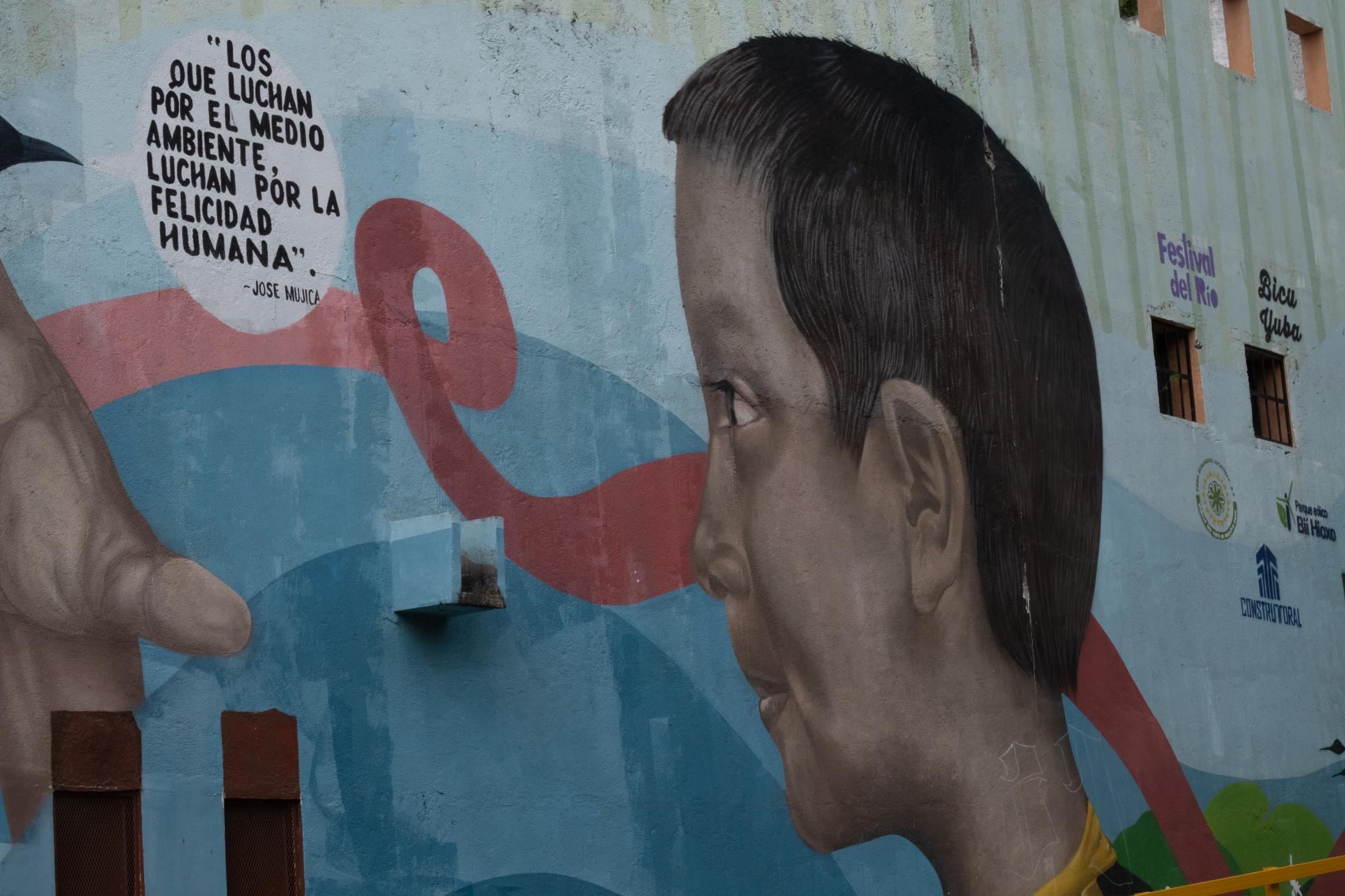 """Continuation of the mural where Uruguay´s ex-president Jose Mujica is quoted """"Those who fight for the environment, fight for human happiness""""."""