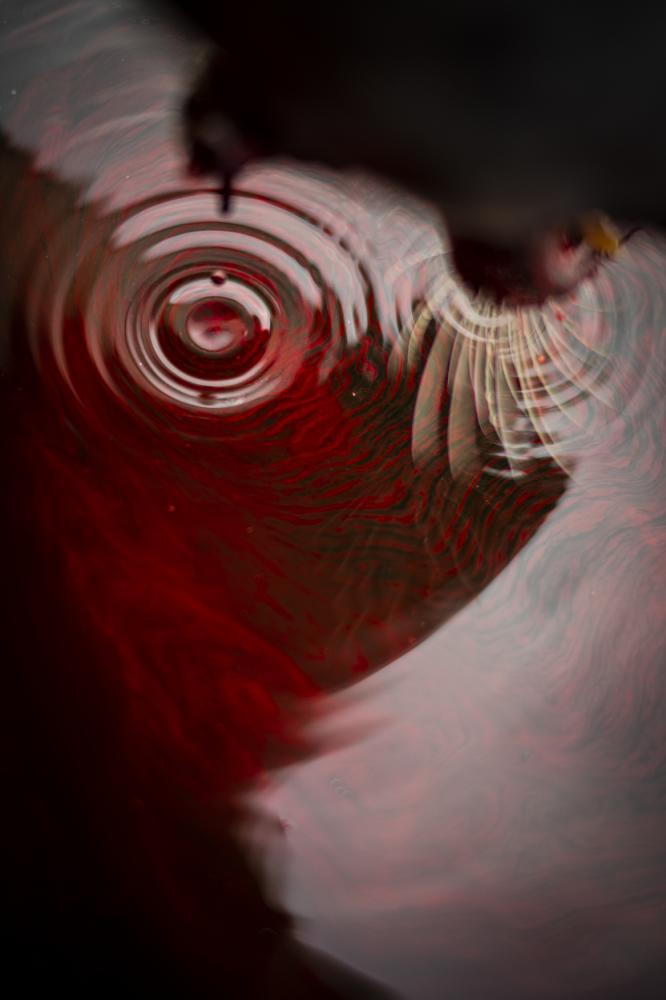Photography image - Loading Goodrich_SeamoftheSea_(5_of_17).jpg