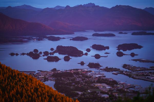 Within the Tongass