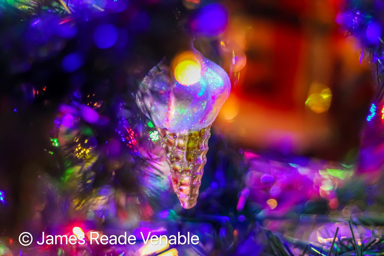 Photography image - Loading James_Reade_Venable__The_Magic_of_Christmas.jpg