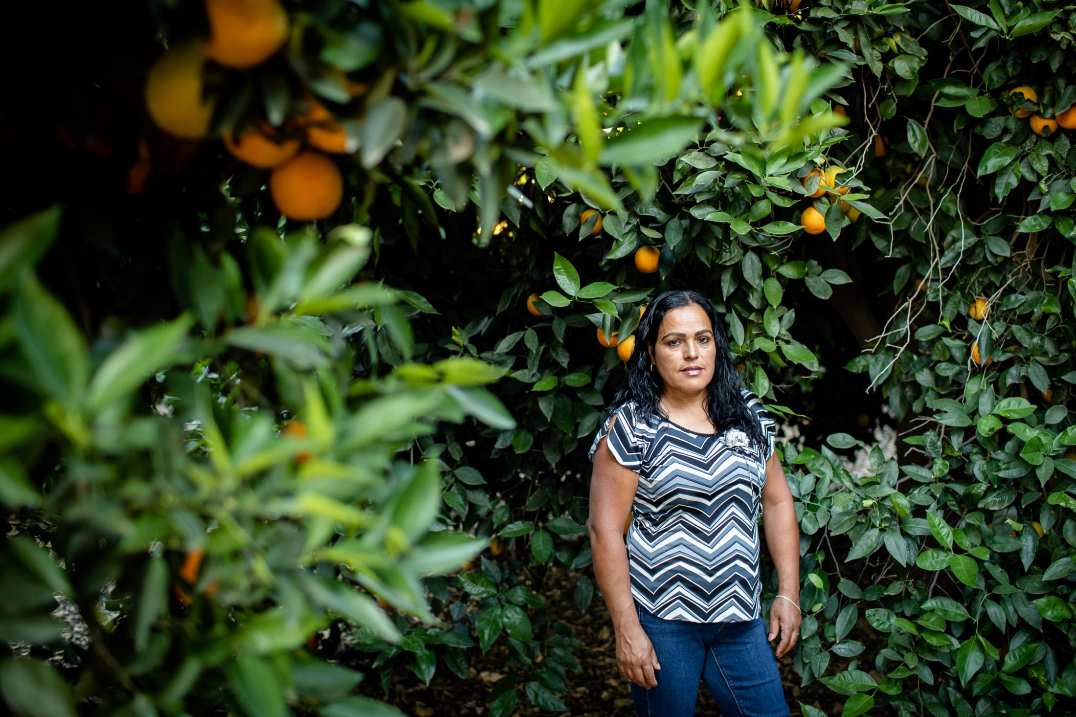 """Fidelia Morales is a mother of five who lives in Lindsay, California, near citrus groves where chlorpyrifos use is common. Morales, who lives next to citrus groves where chlorpyrifos use is common, said pesticide exposure has hurt her family, especially her 11-year-old son: """"My son is not able to stay still and listen in school. I've had to sit with him in the classroom to help with his assignments."""""""