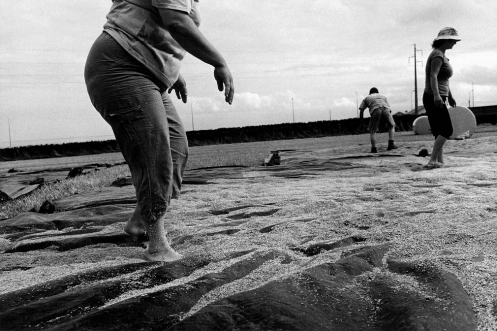 Art and Documentary Photography - Loading DIGITALIZAR004 copy.jpg