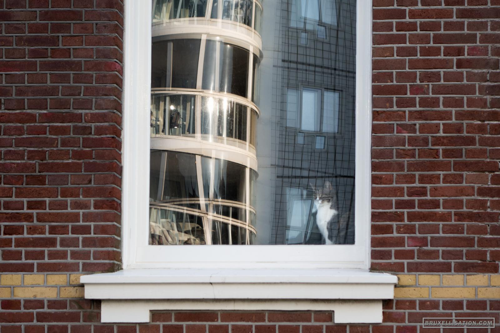 Scheveningen, The Hague, Netherlands, September 2015