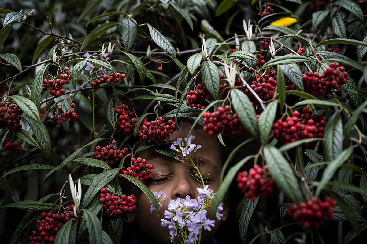 Anne Ackermann ( @anneackermann_) is a photographer based in Germany. My son Luis (6) is smelling spring flowers admidst a rowanberry shrub.