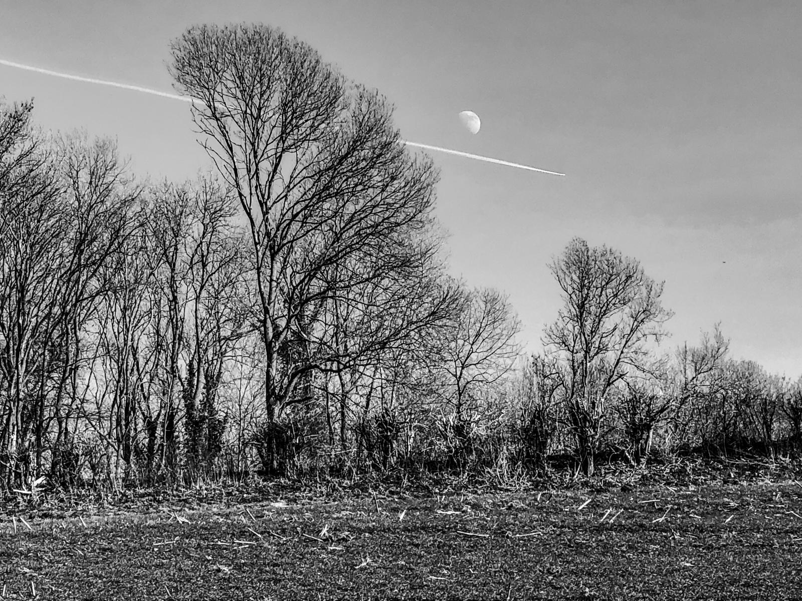 Photography image - Loading James_Reade_Venable__To_The_Moon.jpg