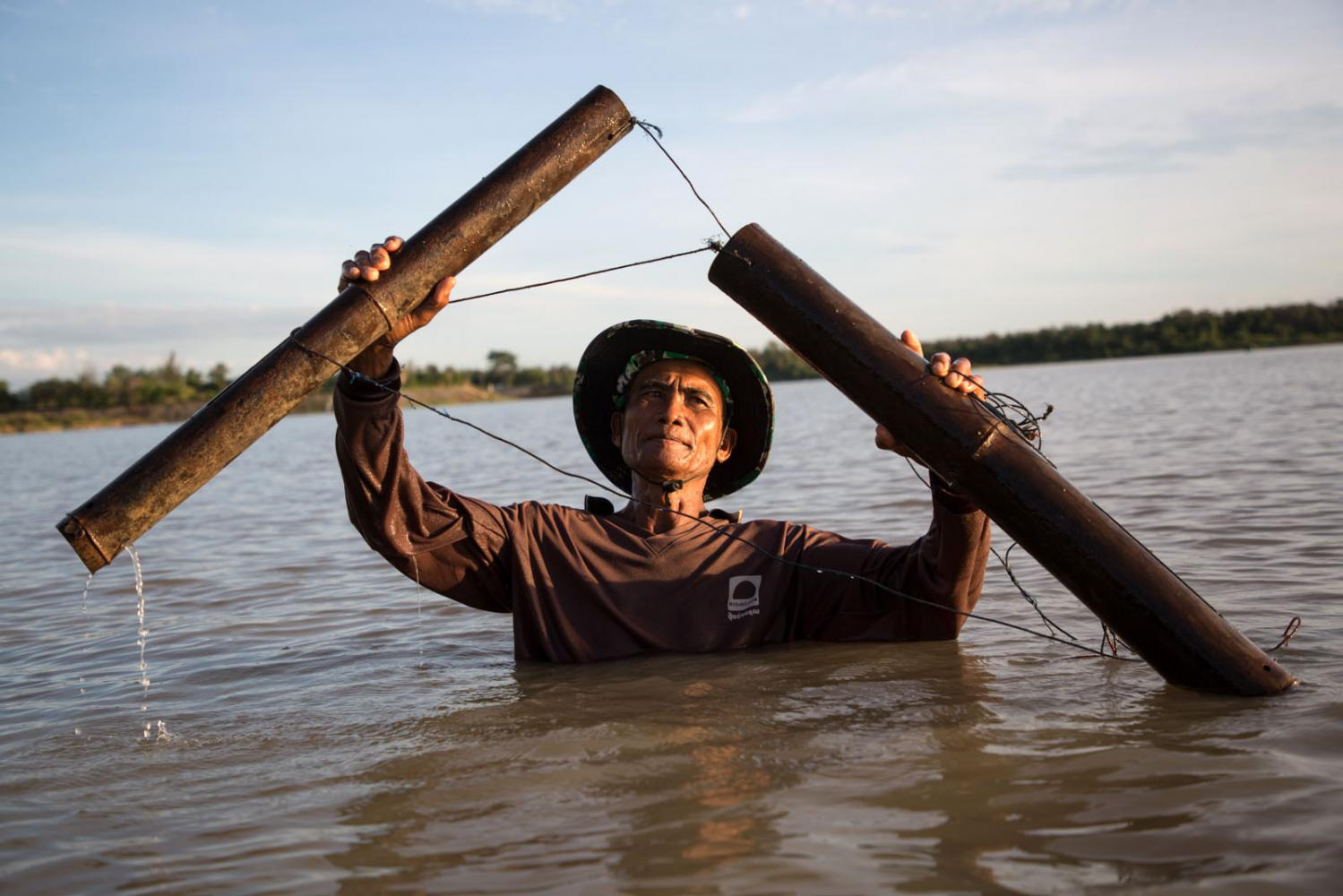 A fisherman catches fishing using a traditional bamboo fish trap. Si Saket, Thailand.