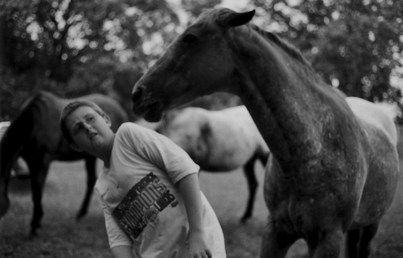 Art and Documentary Photography - Loading 26_at age 12 Grumpy horse.2003.jpg