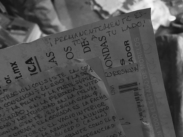 ADIÓS, QUERIDO EXTRAÑO... GOODBYE, DEAR STRANGER... MÉXICO, 2017