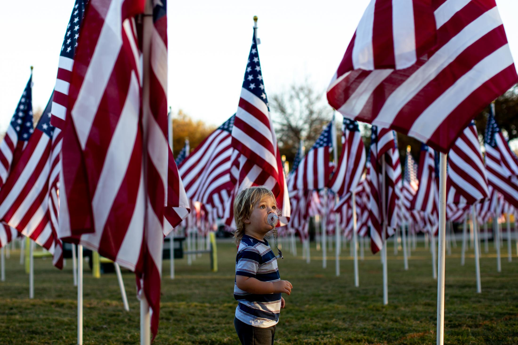 11/9/20KellerTexas - A young boy looks up at an American flags during the third day of the Keller Town Hall, Field of Honor.