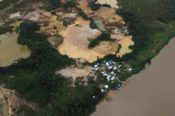 Evolution of illegal mining at the Yanomami IT